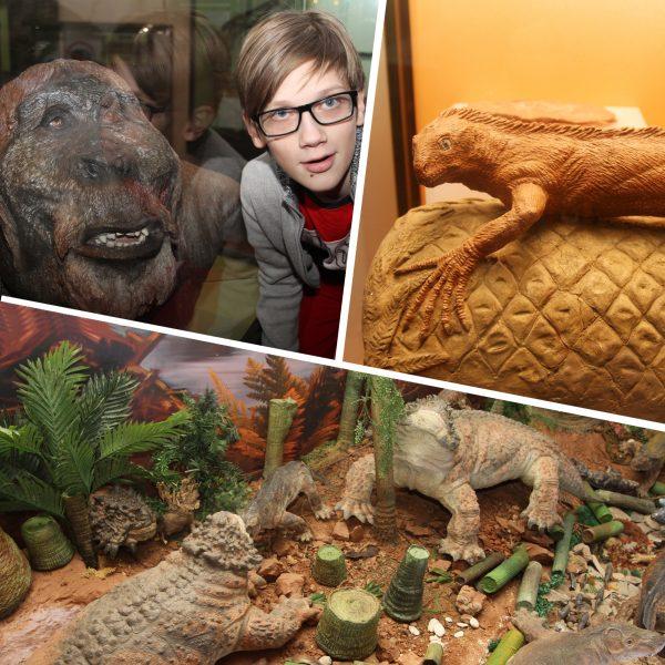 Вятский Палеонтологический музей2
