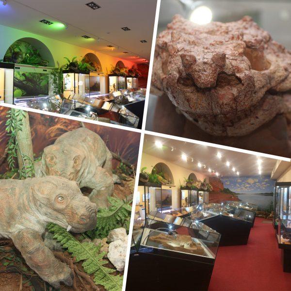 Зал I «Мир древних ящеров»
