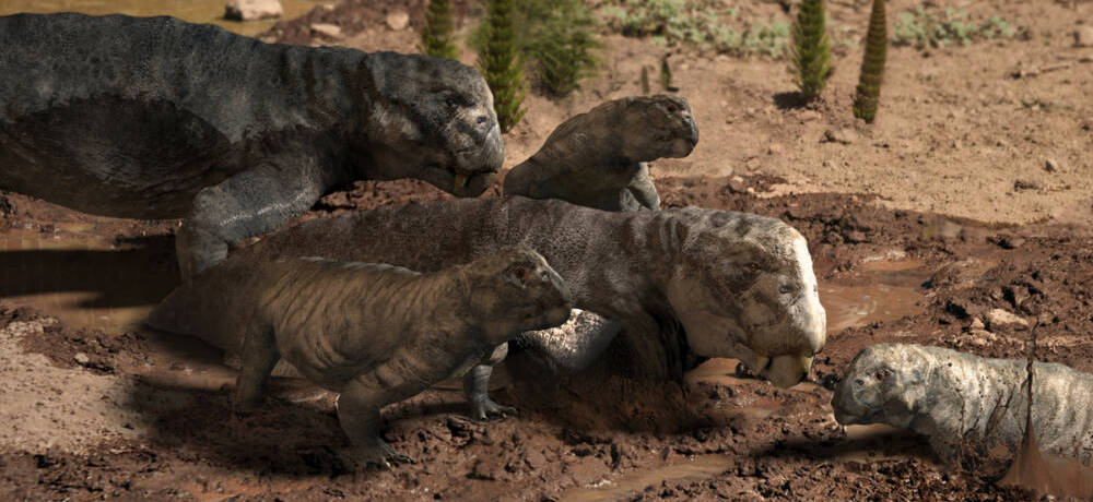 Листрозавр реконструкция