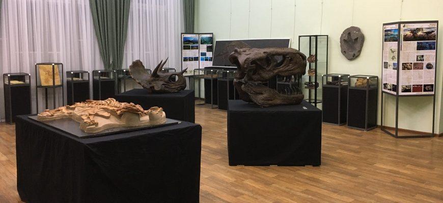 Выставка Сарапул2021