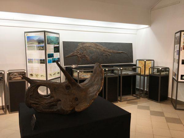 1 - выставка в Воткинске