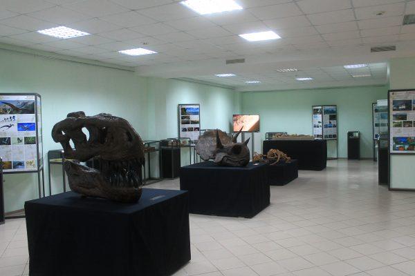 2 - Общий вид выставки