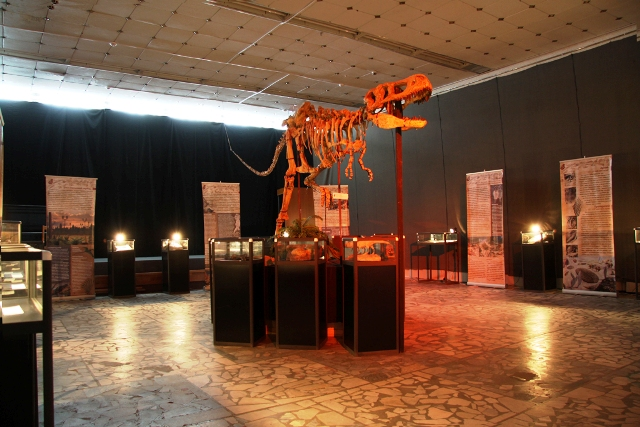 The World of Dinosaurs (Travelling Exhibition)